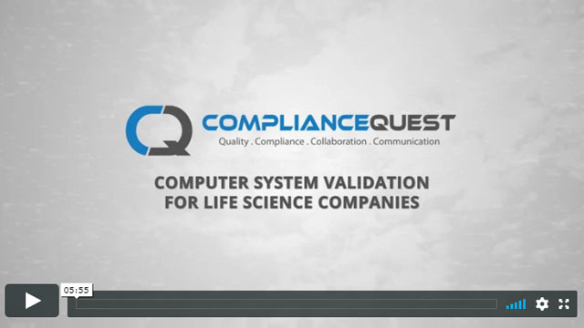 Software Validation Approach